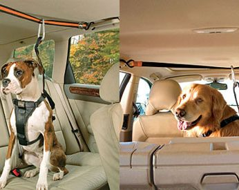Dog Car Harness - Pet Safety